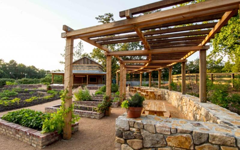 charlotte brody discovery garden at sarah p duke gardens sites - Dicovery Garden